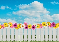 Spring Photo Backdrop