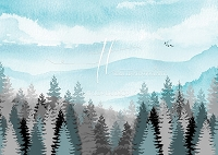 Misty Mountain Forest - Teal