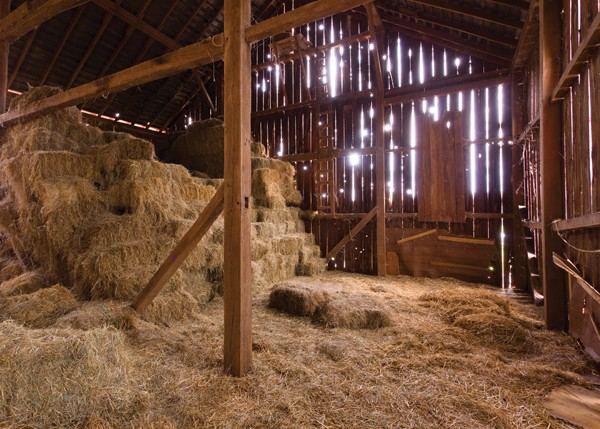 Farm Amp Barn Photo Backdrop