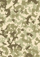 Camouflage Photo Backdrop