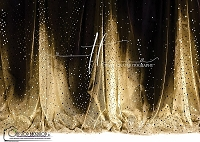 Sequin Curtains Black and Gold 2