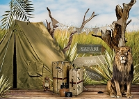 Safari Tours 2