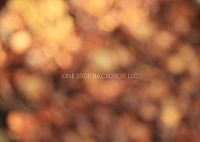 Autumn Blur 1