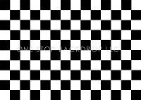 Checker Floor Black and White