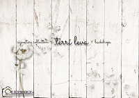 Whitewashed Wood Floral boards 6
