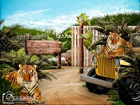 Tiger Kings
