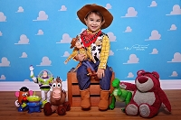 Andy's Room 1 - Toy Story Inspired