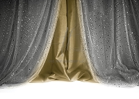 Terri Leva Signature Collection Backdrop