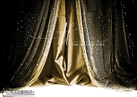 Sequin Curtains Black and Gold 1