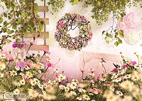 Butter Blush Garden Wall