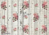 Shabby Rose Mint wood boards